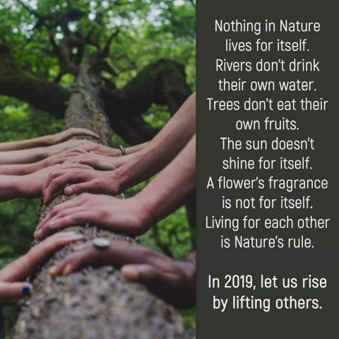Let us rise by lifting others